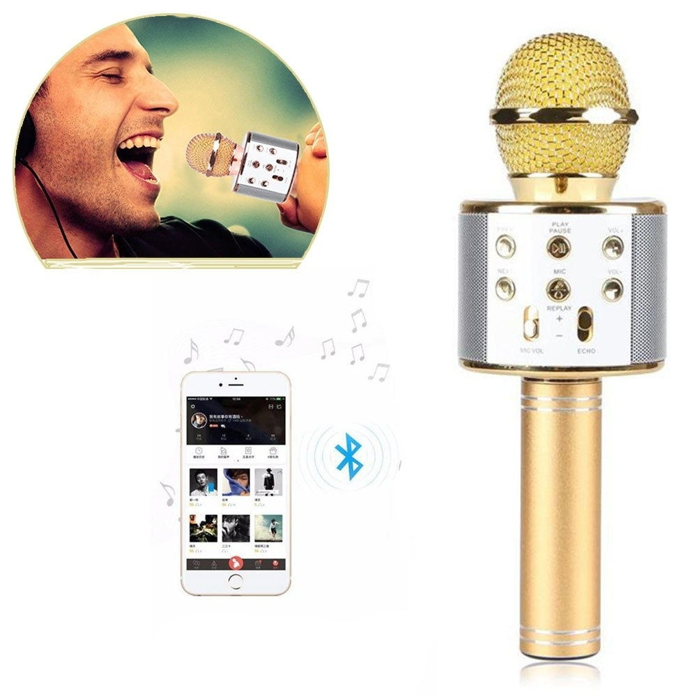 Karaoke mikrofonai
