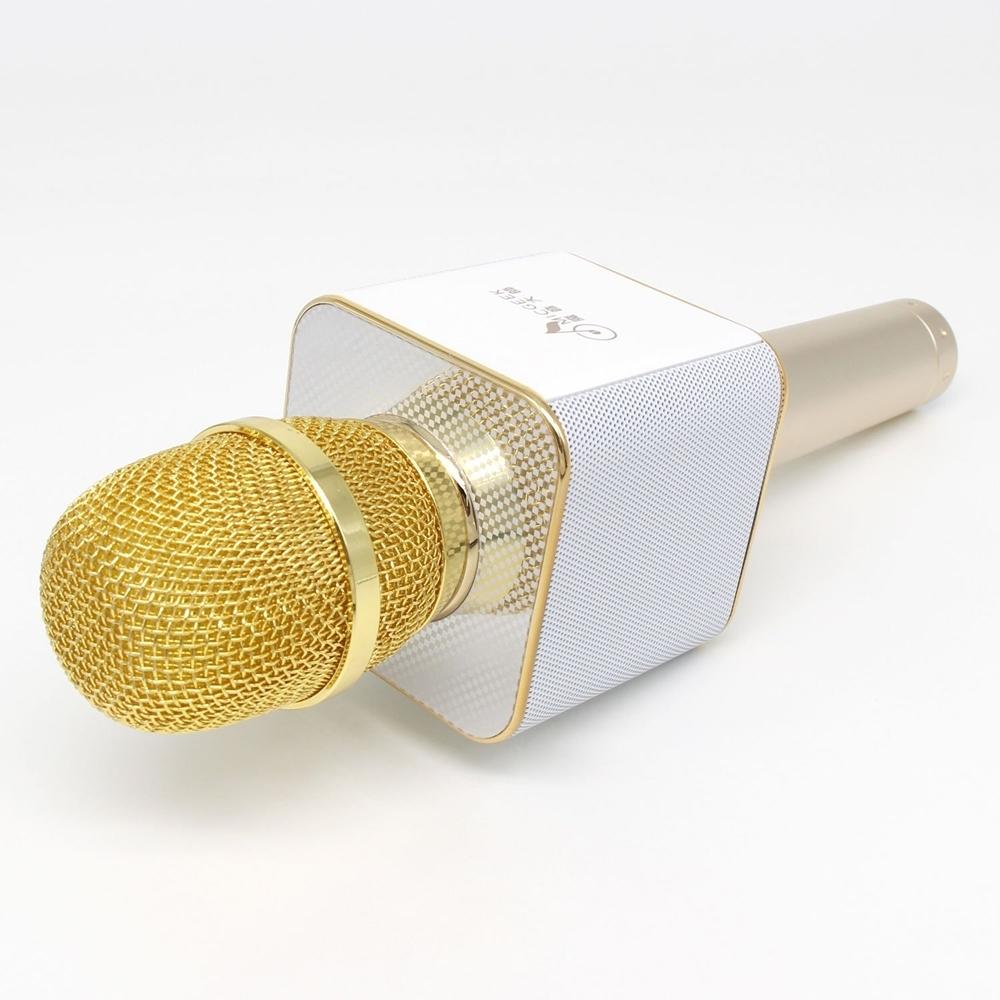 Mikrofonas su efektais Q9