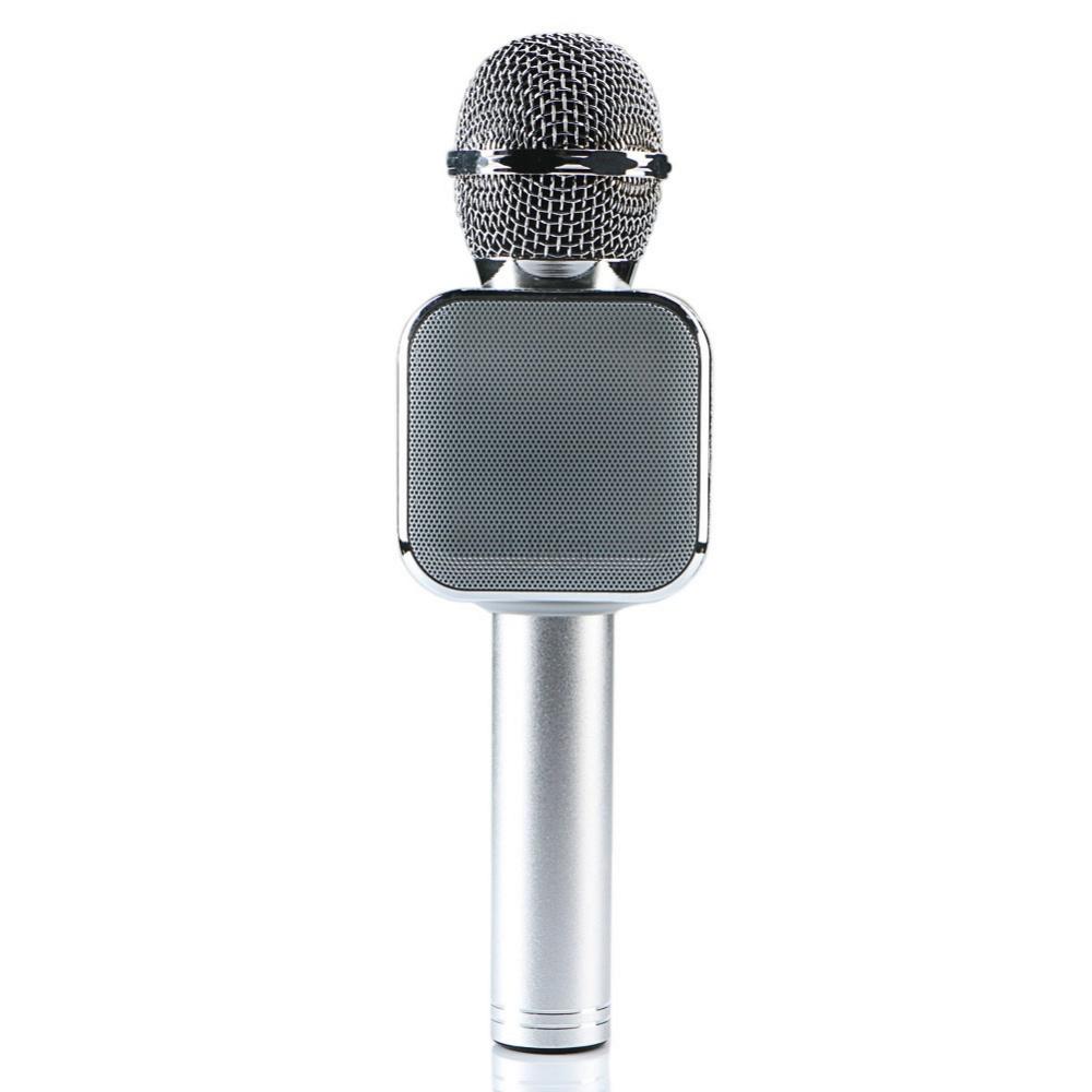 Mikrofonas su efektais WS-1818